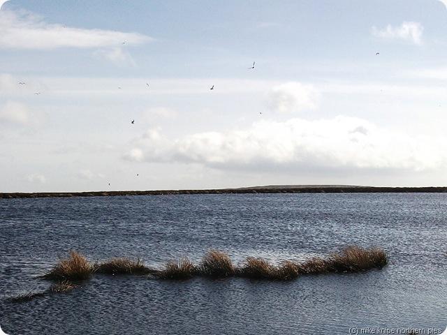 mines dam