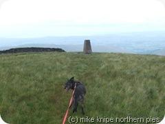 crag hill trig