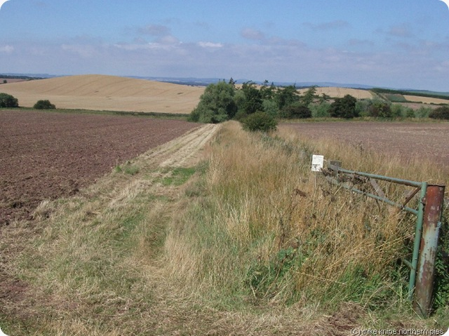 berwickshire countryside
