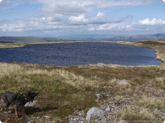 whernside tarn