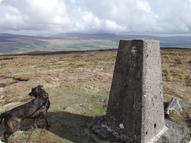 park fell trig point
