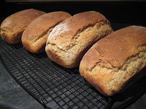 Fresh whole wheat bread