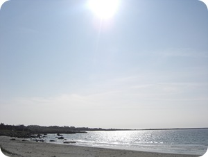 April 2009 213