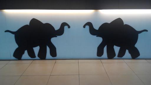 Dancing Twin Elephants