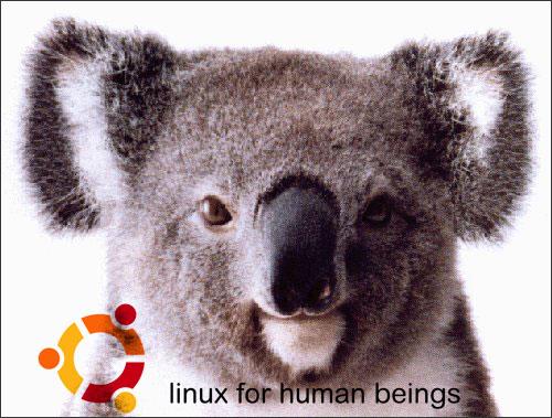 Beta de Karmic Koala