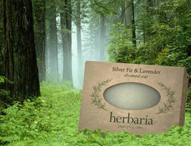 Silver Fir and Lavender all-natural soap by Herbaria