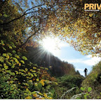 Privateer, Mountain Bike Syndrome, From the Publishers of Rouler, $25