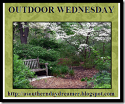 OutdoorWednesdaybutton54