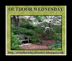 OutdoorWednesdaybutton5433333333333