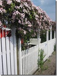 Danmark mai 2011 054