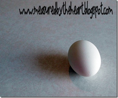 ordinary egg