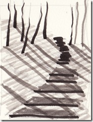 black steps YSP