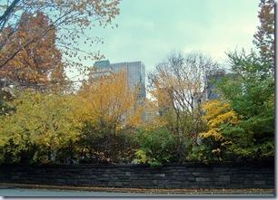 Central Park Fall 1