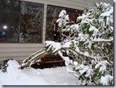 a-Rhodie_snow 5