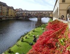 7 Florence 13