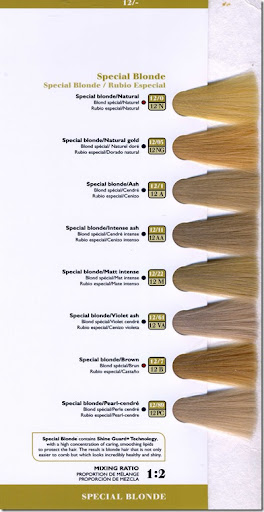 hair color swatches chart. Chart, hair tags beauty, dye,