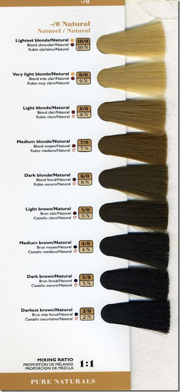 Men Amp Hair Color  Professional Method For Those Of You Interested In DIY