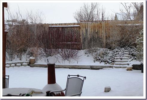 snow 1_1_11 (1)