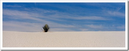 Marty_Carden_White_Sands_13