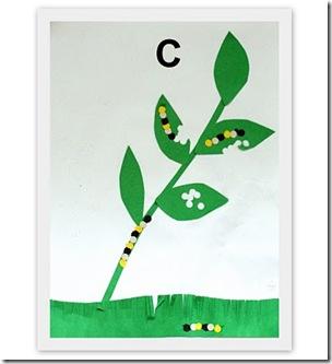 Letter C Activities3