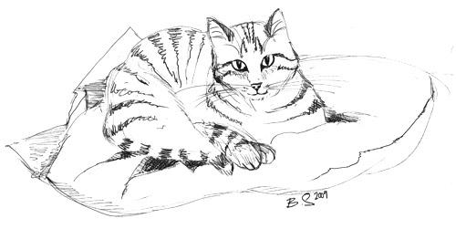 Zeichnung von Ruby