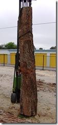 Log15-2