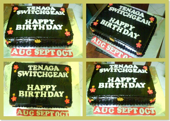 Tenaga Switchgear Bday