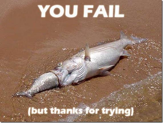 fail (101)