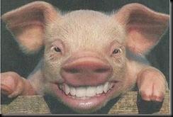 cerdo%20grande