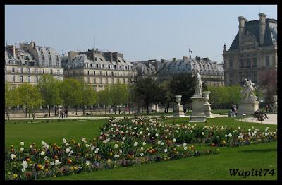 Une semaine printannière à Paris 6.Tuileries