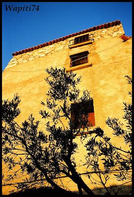 Corsica - Page 2 Corse_2006_en%20Balagne%203