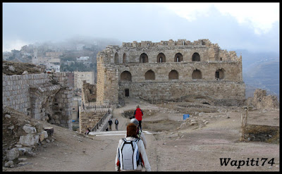 Jordanie : au pays des Nabatéens, des Grecs, des Croisés... et de Dame Nature ! 154%20Karak