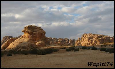 Jordanie : au pays des Nabatéens, des Grecs, des Croisés... et de Dame Nature ! IMG_0553