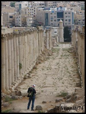 Jordanie : au pays des Nabatéens, des Grecs, des Croisés... et de Dame Nature ! IMG_0511