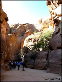 Jordanie : au pays des Nabatéens, des Grecs, des Croisés... et de Dame Nature ! 282%20Petra