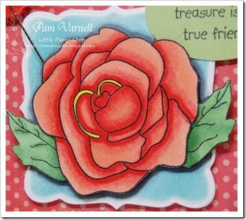 Rose-4a