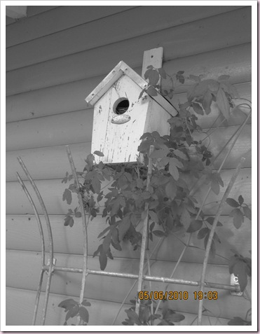 fuglehuset