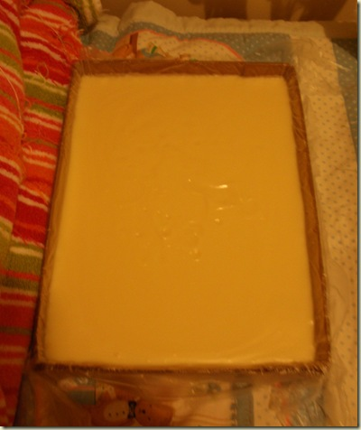 Lard Soap 2