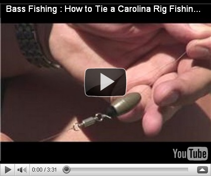 How to tie carolina rig
