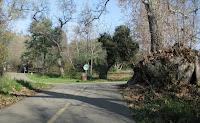 Los Gatos Trail 201.JPG