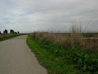 Shoreline South Bike Trail 062.JPG Photo