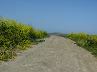 Home to Alviso Loop Logged 109.JPG Photo