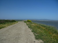 Home to Alviso Loop Logged 126.JPG Photo