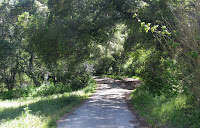 Sunol Regional Wilderness Hike 004.JPG Photo
