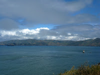 San Fran Lands End Walk 031.JPG