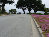Pacific Grove Trail 152.JPG