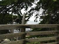 Pacific Grove Trail 258.JPG