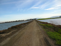 BayLands to BayFront 35M Bike Ride 071.JPG Photo