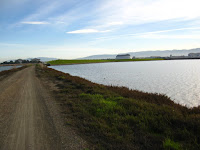 BayLands to BayFront 35M Bike Ride 076.JPG Photo