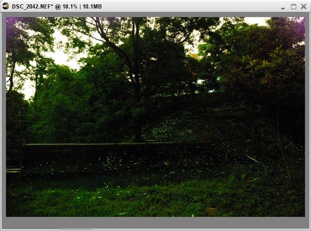 2010-04-24_025228